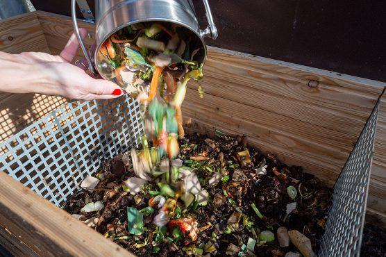 Bei Der Kompostierung